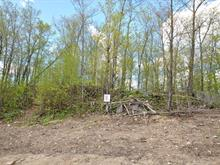 Lot for sale in L'Ange-Gardien, Outaouais, Chemin de la Montagne, 15192485 - Centris