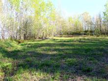 Lot for sale in Austin, Estrie, Chemin  North, 24981729 - Centris