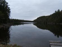 Lot for sale in Amherst, Laurentides, Chemin du Lac-de-la-Grange, 21237024 - Centris