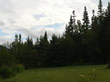 Terrain à vendre à Thetford Mines, Chaudière-Appalaches, 6548, Chemin  Auclair, 10305135 - Centris