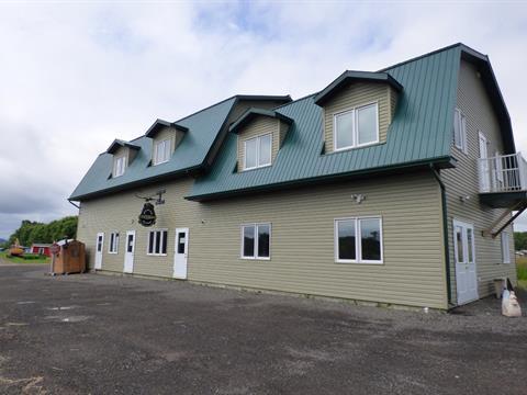 Bâtisse commerciale à vendre à Saint-André-d'Argenteuil, Laurentides, 340, Route du Long-Sault, 23219451 - Centris