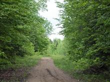 Lot for sale in Duhamel, Outaouais, Chemin de la Grande-Baie, 10641745 - Centris