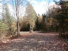 Terrain à vendre à Mont-Laurier, Laurentides, 1, Chemin des Pionniers, 9337171 - Centris