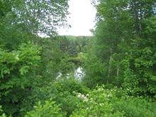 Lot for sale in Saint-Faustin/Lac-Carré, Laurentides, Rue  Airville Sud, 15048355 - Centris