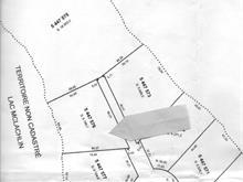 Terrain à vendre à Kipawa, Abitibi-Témiscamingue, Chemin  Chute-aux-Pins-Rouges, 20001359 - Centris