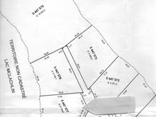 Lot for sale in Kipawa, Abitibi-Témiscamingue, Chemin  Chute-aux-Pins-Rouges, 15159966 - Centris