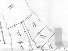 Terrain à vendre à Kipawa, Abitibi-Témiscamingue, Chemin  Chute-aux-Pins-Rouges, 14845835 - Centris