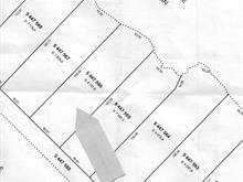 Lot for sale in Kipawa, Abitibi-Témiscamingue, Chemin  Chute-aux-Pins-Rouges, 16154602 - Centris