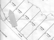 Terrain à vendre à Kipawa, Abitibi-Témiscamingue, Chemin  Chute-aux-Pins-Rouges, 21078206 - Centris