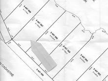 Lot for sale in Kipawa, Abitibi-Témiscamingue, Chemin  Chute-aux-Pins-Rouges, 9781411 - Centris