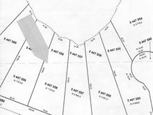 Lot for sale in Kipawa, Abitibi-Témiscamingue, Chemin  Chute-aux-Pins-Rouges, 17397266 - Centris