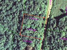 Lot for sale in Lac-Supérieur, Laurentides, Chemin du Canton-Archambault, 22101852 - Centris