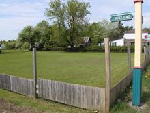 Terrain à vendre à Chénéville, Outaouais, 72, Rue  Albert-Ferland, 16516935 - Centris