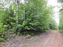 Lot for sale in Duhamel, Outaouais, Chemin de la Grande-Baie, 13691956 - Centris