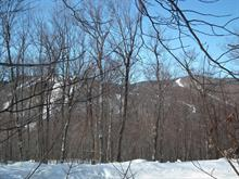 Lot for sale in Lac-Supérieur, Laurentides, Chemin du Mont-la-Tuque, 8122142 - Centris