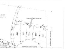 Lot for sale in Kipawa, Abitibi-Témiscamingue, Chemin  Chute-aux-Pins-Rouges, 9014107 - Centris