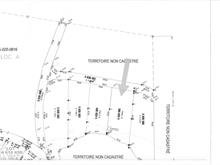 Lot for sale in Kipawa, Abitibi-Témiscamingue, Chemin  Chute-aux-Pins-Rouges, 10476723 - Centris