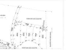 Lot for sale in Kipawa, Abitibi-Témiscamingue, Chemin  Chute-aux-Pins-Rouges, 10668438 - Centris