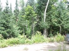 Lot for sale in Lac-Saguay, Laurentides, Chemin  Gauthier, 20819997 - Centris