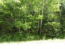 Terrain à vendre à Mont-Laurier, Laurentides, 1, Chemin du Lac-de-la-Dame, 12341554 - Centris