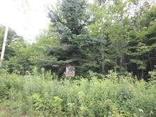 Terrain à vendre à Chertsey, Lanaudière, 2e Rue, 8548468 - Centris