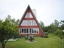 Maison à vendre à Princeville, Centre-du-Québec, 50, Avenue du Barrage, 19965120 - Centris