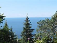 Terre à vendre à Saint-Maxime-du-Mont-Louis, Gaspésie/Îles-de-la-Madeleine, Chemin des Côtes, 13712376 - Centris