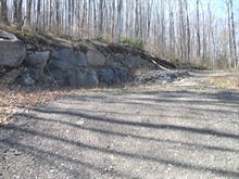 Terrain à vendre à Chénéville, Outaouais, Chemin du Domaine-Familial, 14314780 - Centris