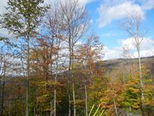 Lot for sale in Sutton, Montérégie, Chemin des Montagnes-Vertes, 9162046 - Centris