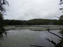 Terre à vendre à Lac-des-Plages, Outaouais, Chemin du Tour-du-Lac, 9012944 - Centris