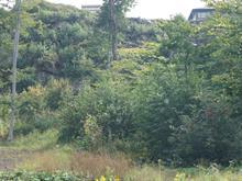 Terrain à vendre à Les Chutes-de-la-Chaudière-Ouest (Lévis), Chaudière-Appalaches, 1053, Rue des Saisons, 14547677 - Centris