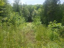 Lot for sale in Mandeville, Lanaudière, Ancien ch. du Lac-Sainte-Rose, 11584547 - Centris