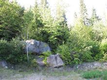 Terrain à vendre à Sainte-Agathe-des-Monts, Laurentides, Montée du Versant-Sud Sud, 25535895 - Centris