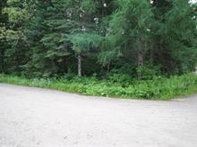 Lot for sale in Saint-Donat, Lanaudière, Chemin  Bernier, 12925099 - Centris