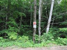 Lot for sale in Denholm, Outaouais, 28, Chemin du Lac-Sam, 22206269 - Centris