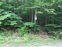 Lot for sale in Denholm, Outaouais, 32, Chemin du Lac-Sam, 17714474 - Centris