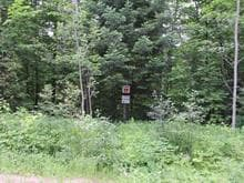Lot for sale in Denholm, Outaouais, 17, Chemin du Poisson-Blanc, 13944128 - Centris