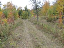Terrain à vendre à Mont-Laurier, Laurentides, Chemin du Lac-Nadeau, 16966592 - Centris