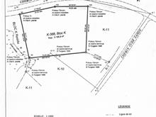 Lot for sale in Saint-Donat, Lanaudière, 1119, Chemin  Ouareau Nord, 17446833 - Centris