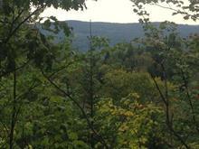 Terre à vendre à Morin-Heights, Laurentides, 2e Rang, 11230225 - Centris