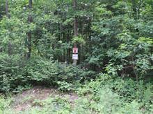 Terrain à vendre à Denholm, Outaouais, 8, Chemin du Poisson-Blanc, 10049607 - Centris