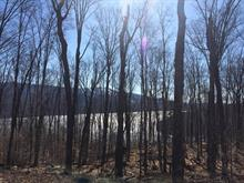 Lot for sale in Lac-Tremblant-Nord, Laurentides, Chemin des Rondins, 18634602 - Centris