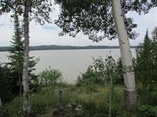 Terre à vendre à Taschereau, Abitibi-Témiscamingue, 600, Chemin du Quai-Fédéral, 23062323 - Centris