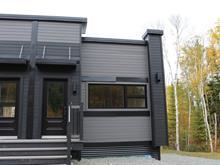 Condo à vendre à Barraute, Abitibi-Témiscamingue, 36, Chemin du Mont-Vidéo, app. 1, 22934567 - Centris