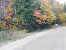 Terrain à vendre à Saint-Donat, Lanaudière, Chemin du Domaine-Ayotte, 20158490 - Centris