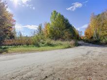 Terrain à vendre à Fort-Coulonge, Outaouais, Rue  Colton, 12256619 - Centris