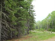 Lot for sale in Saint-Michel-des-Saints, Lanaudière, Chemin  Caroline, 26654561 - Centris