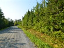 Lot for sale in Saint-Joseph-de-Coleraine, Chaudière-Appalaches, Chemin du Lac-Bisby, 21346406 - Centris