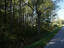 Lot for sale in Saint-Georges-de-Clarenceville, Montérégie, Chemin  Lakeshore, 9690246 - Centris