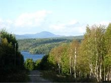 Lot for sale in Potton, Estrie, Chemin de Knowlton-Landing, 16971910 - Centris